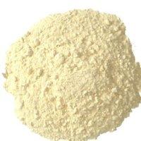 Dry Garlic Extract Powder
