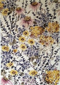 Silk Cotton Printed Fabrics
