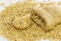 High Grade Paddy Seeds