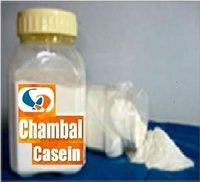 Chambal Casein