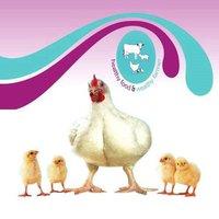 Alterbiotic Feed Supplement