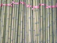 Bamboo Poles Sticks