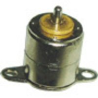 Step Motor (1011BY)