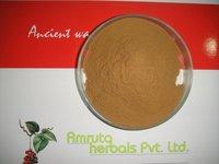 Natural Brahmi Extract