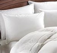 Pillow Covers 100% Cotton