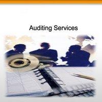 Statutory Audit Service