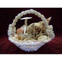 Sea Shell Crafts