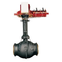 Soft-Seated Trunnion Mounted Ball Valves