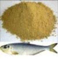 Fish Feed