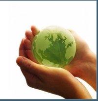Carbon Credit Advisory Services