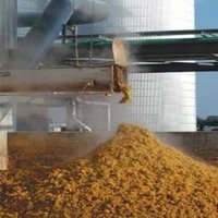 Dairy Gold Cattle Feed