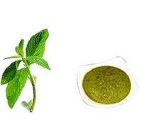 Dehydrate Mint Leaves & Powder