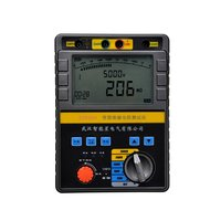 Z2020 Series Intelligent Insulated Resistance Tester