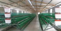 Plastic Coated Layer Cage
