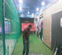 Cricket Simulator Pace Economy