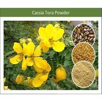 Top Quality Natural Cassia Gum Powder