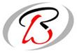 BHARAT WILWAYS