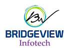 BRIDGEVIEW INFOTECH