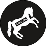 STALLION PAINTS