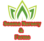 SEEMA NURSERY AND FARMS