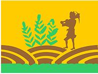 Terra Agro Biotech Pvt Ltd
