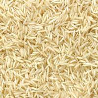 Pusa Rice
