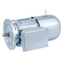 Bonfiglioli Electric Motor