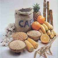 Agricultural Products