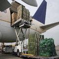 Cargo Handling Service Provider