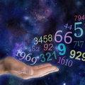 Numerology Adviser