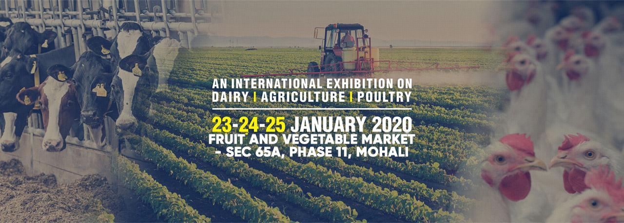 DAP EXPO 2020