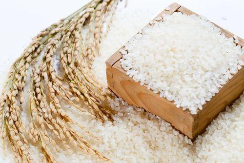 Japonica White Rice 5% Broken