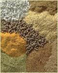 Feed Ingredients